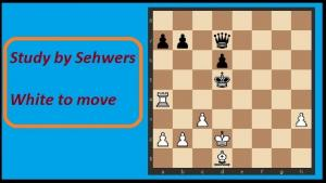 Amazing Artistic Endgame by Sehwers (+ Video)