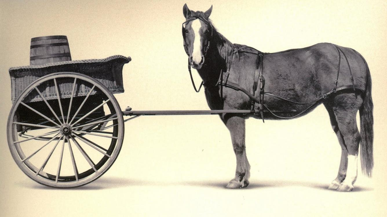 Chess Cart Before the Horse