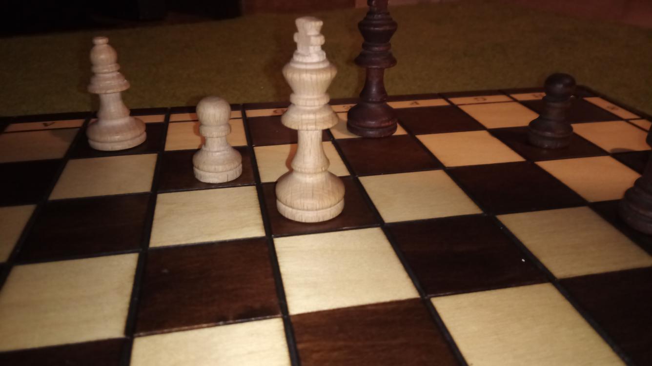 Najlepsze szachowe otwacia dla początkujących