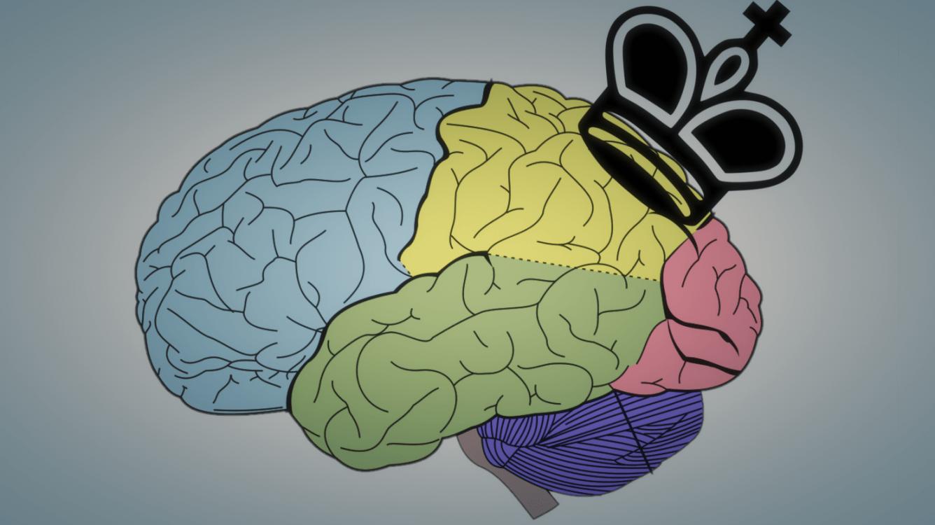 Understanding AlphaZero: A Basic Chess Neural Network