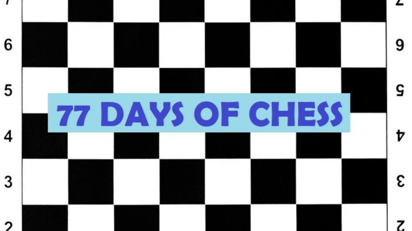 77 Days of Chess: Update Three
