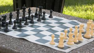 Reti's Maneuver and a Race of Pawns (+ Video)