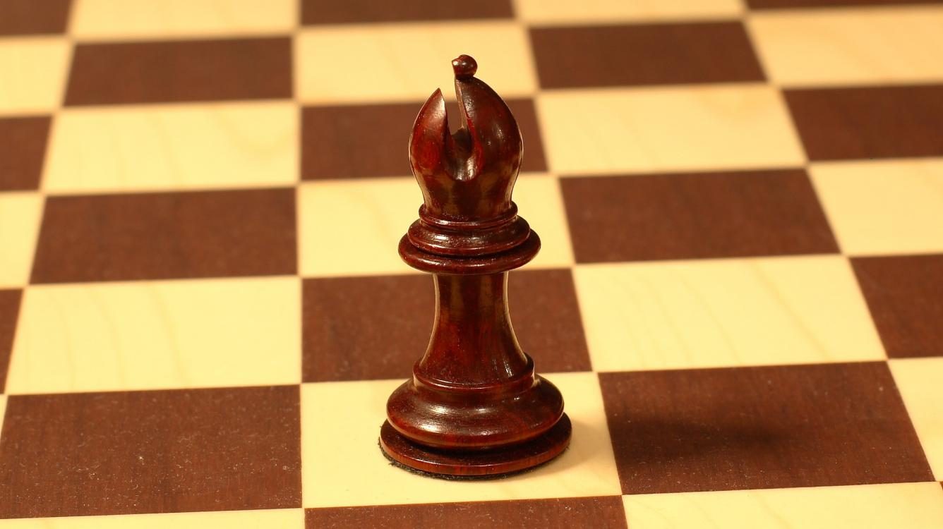 VIDEO! Webinar 12. How to Play with Opposite-colored Bishops