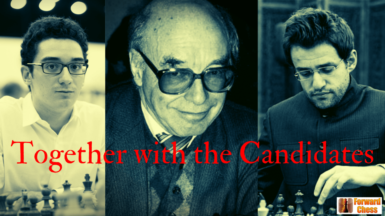 """Together with the Candidates"" wins FIDE Book of the Year"