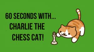 60 seconds with... Charlie the Chess Cat!