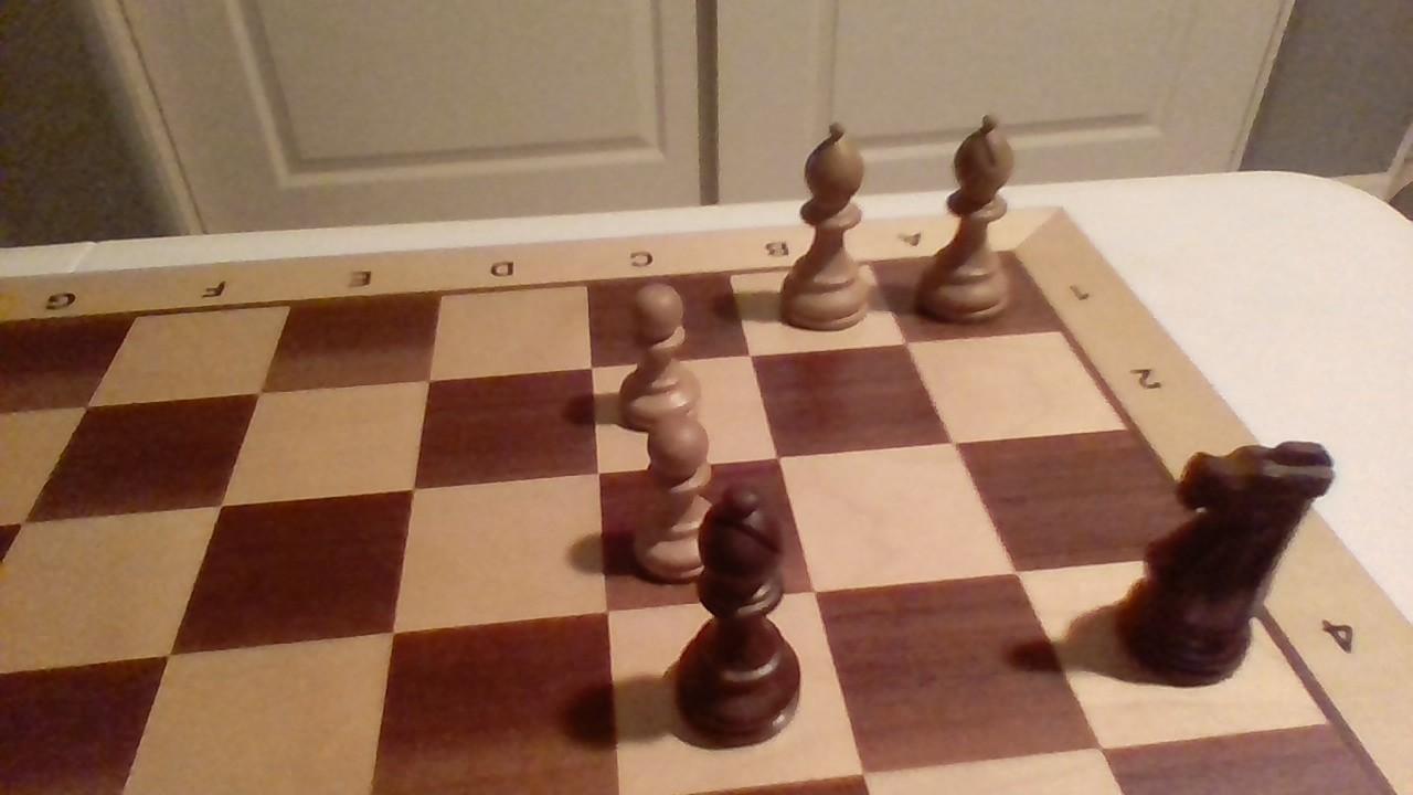 Positional Elements in Action #2 (Battling the bishops)