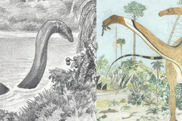 Opening Myths: The mystery of the Mokele-mbembe variation