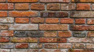 Kamienna Ściana - debiut nie do przebicia?!