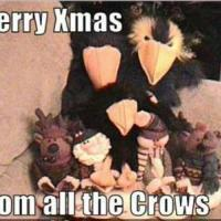 the Crows Blog page