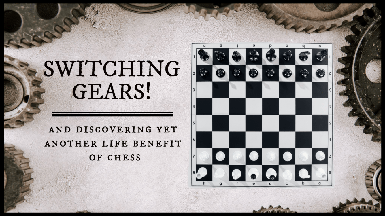 Finding your faults is the first step to self-improvement... In both chess and life.