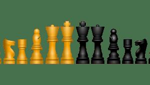 Every chess piece