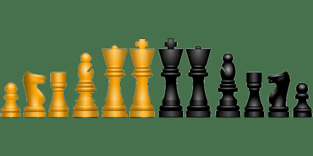 Cada pieza de ajedrez