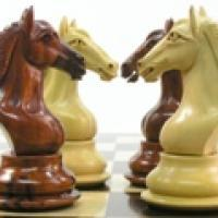 Chess Company For Sale