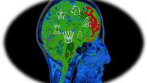 ¿Qué Pasa En Nuestro Cerebro Cuando Jugamos Ajedrez?