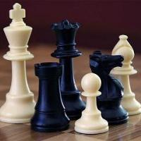 Which piece Do we rely on Most when we play chess