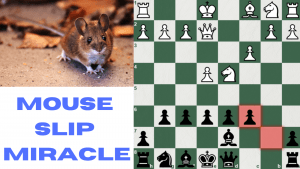 Mouse Slip Miracle!