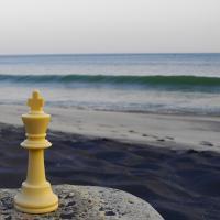 Terrible chess defeats 2