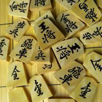Chess and Japanese Shogi(将棋)