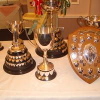 Channel Island Inter Insular report