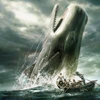 Landing my White Whale