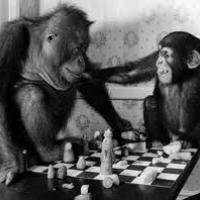 How chess can help you with your cursed monkey's paw