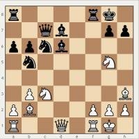 The point of chess problems