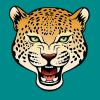 RK - Chess Cheetahs