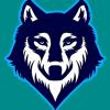 RK - Warrior Wolves