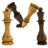 Chess M SIG
