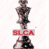 Slow LIVE Chess Association