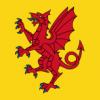 Somerset Wyvern