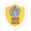Chess with Mr. S School