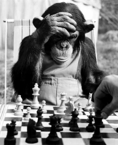 Recent photo of me playing chess