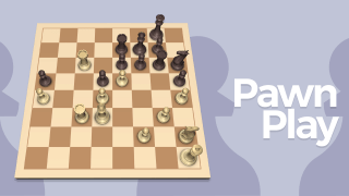 Pawn Play in the Endgame