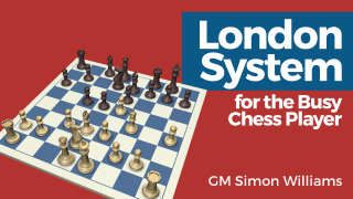 London System for the Busy Chess Player