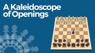 A Kaleidoscope of Openings