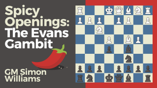 Spicy Openings: The Evans Gambit
