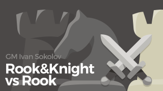 Rook and Knight vs. Rook
