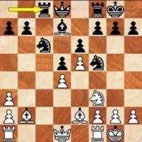 Pocket Fritz 3 Wins 'Human' Chess Tourney