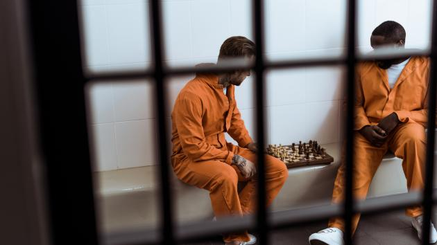 A Judge's Sentence: 25 Hours Of Chess