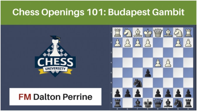 Chess Openings 101: Intro To The Budapest Gambit!