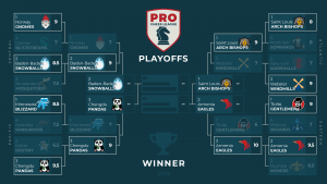 PRO Chess League: Snowballs, Eagles Book Final Tickets To San Francisco