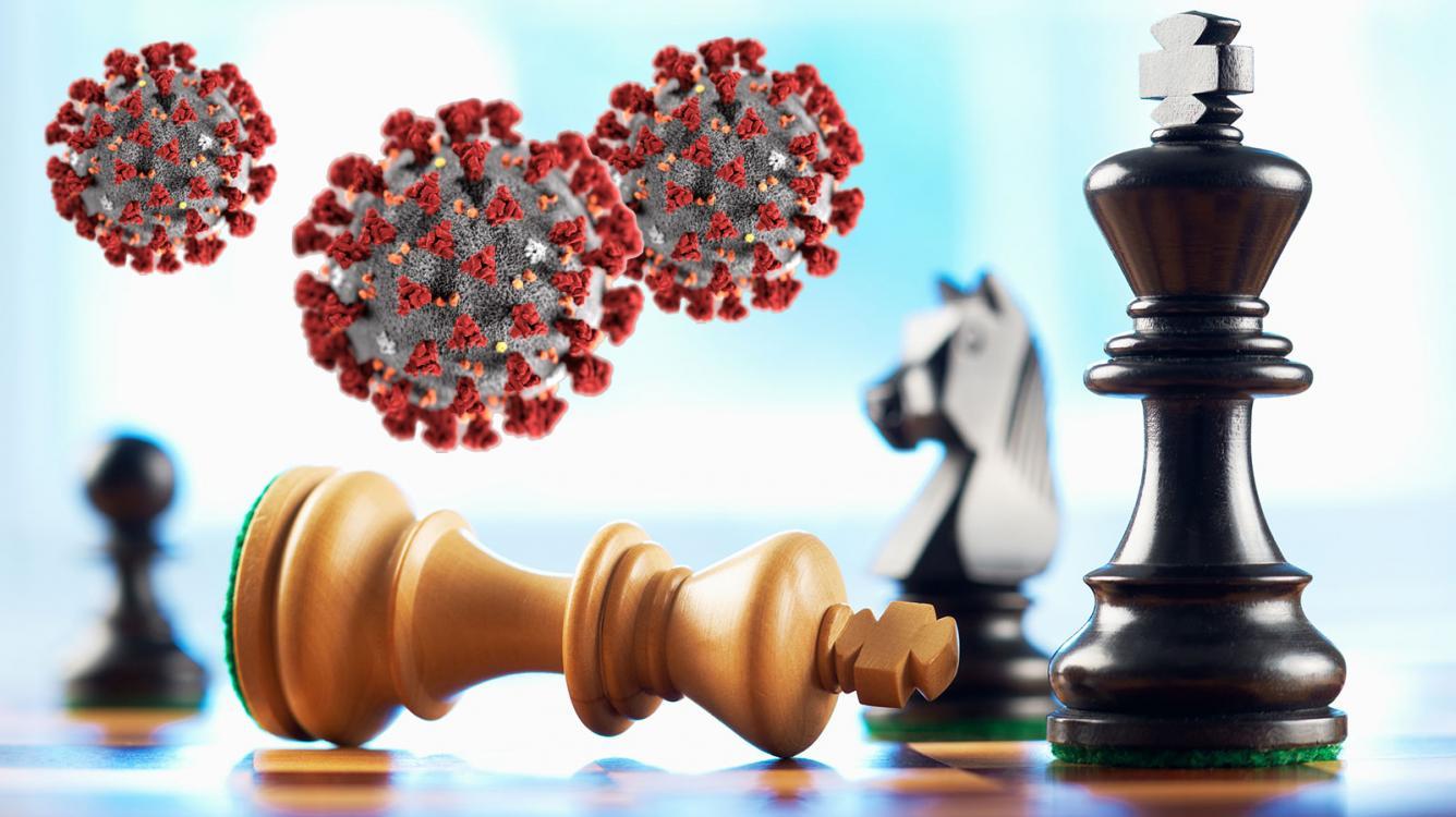 """""""Оффлайновые шахматы"""" возвращаются по мере ослабления карантина"""