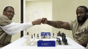 Xadrez pela Liberdade: conferência e torneio online