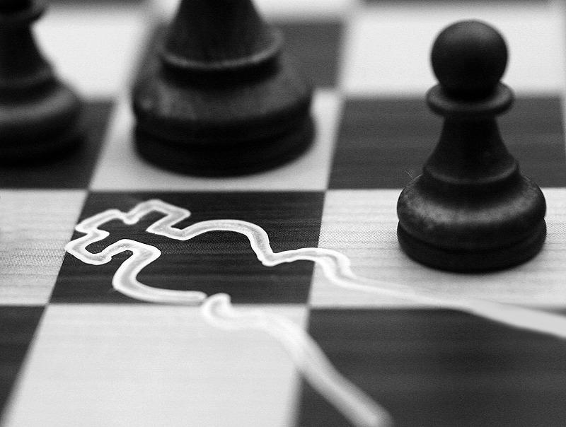 Ставка на шахматы картинка прикол