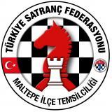 34TSFMaltepe