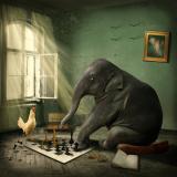 ChessWine27