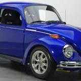 escarabajo12