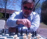 Wait, I play chess?