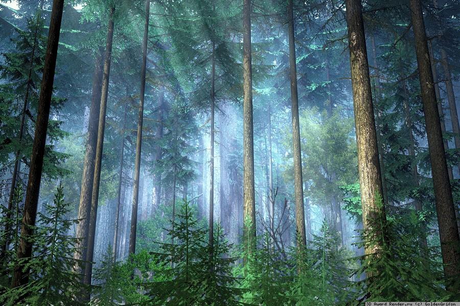 Открытки с международным днем лесов
